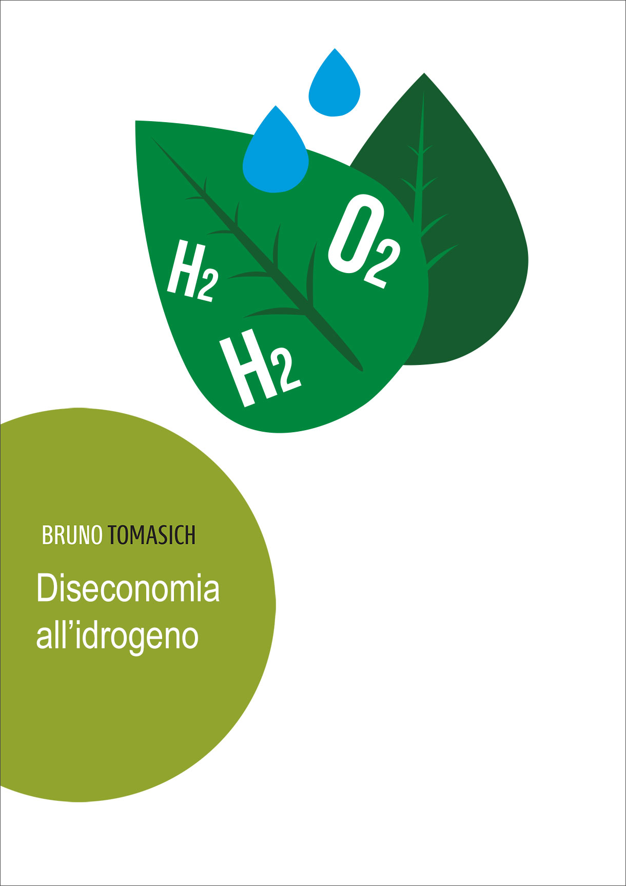 Diseconomia all'Idrogeno | Cover for Bruno Tomasich
