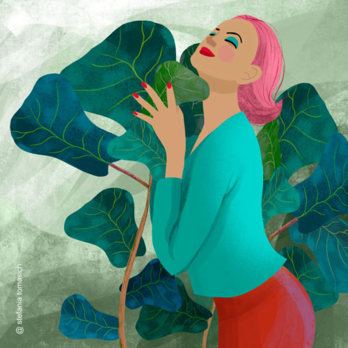 Ficus Lyrata Love | By Stefania Tomasich