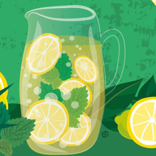Lemonade Recipe Illustration By Stefania Tomasich